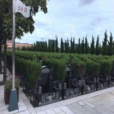 天长公墓传统墓58区